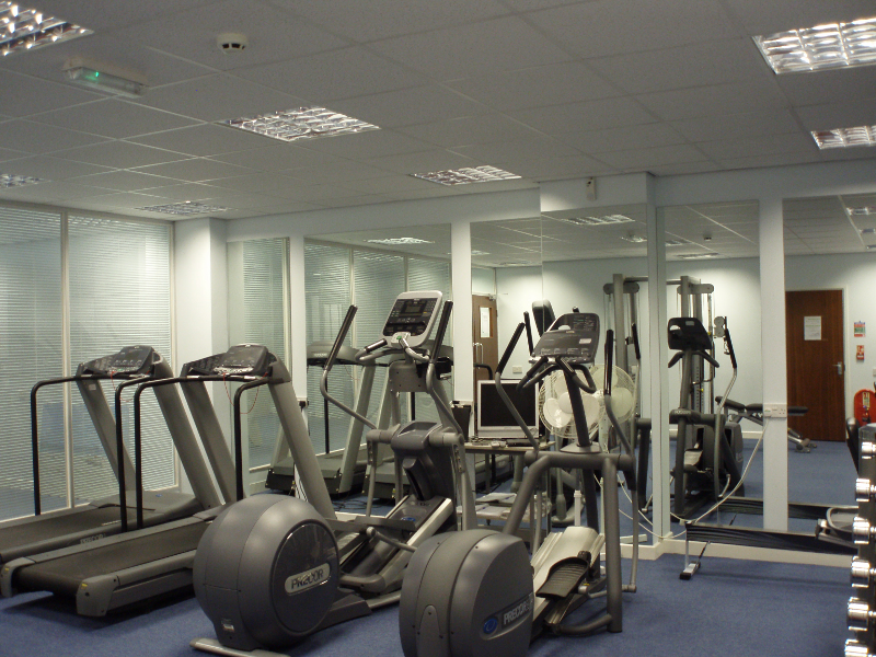 Example Gym Mirrors